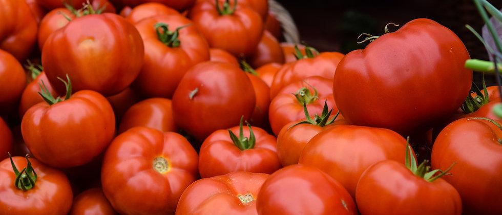 Floradade Tomato