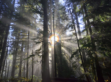 Growing in Spiritual Awareness:                      Three Misconceptions