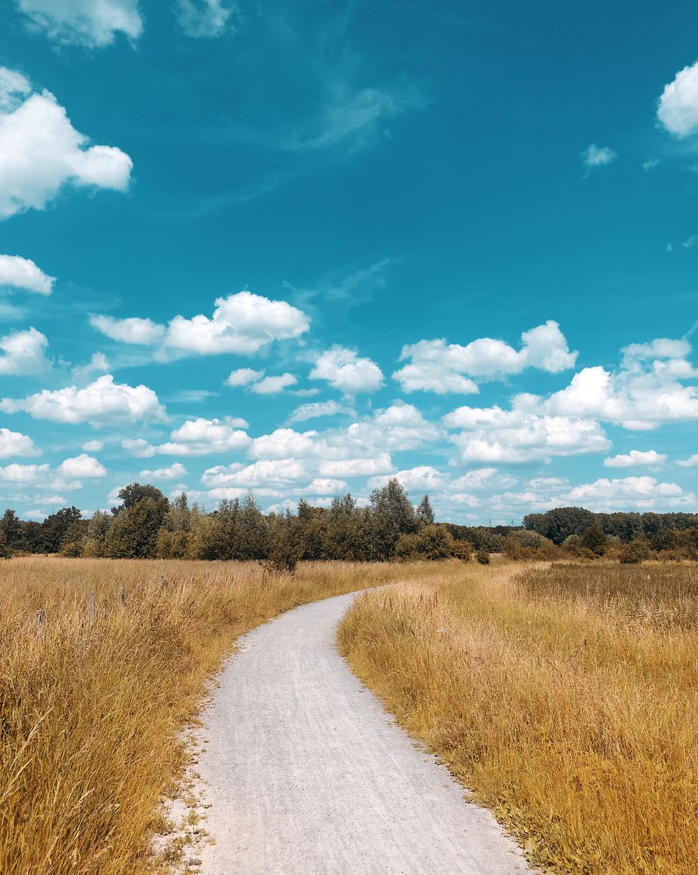 Der Weg ist das Ziel (Weg der durch Felder führt)