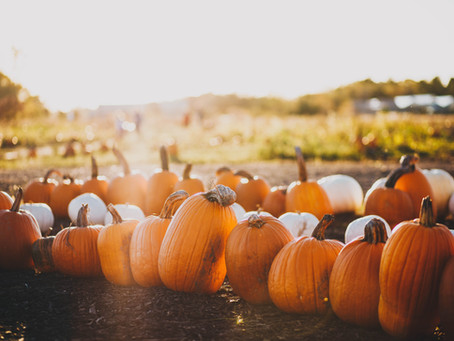 Things to do this October in the Greater Sacramento Area
