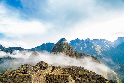 Peru FTO APESI Co op - San Ignacio Double Certified - Per Kg
