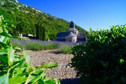 Abbaye de Senanque