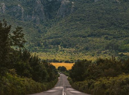 אריאל הכהן | דרך לא דרך