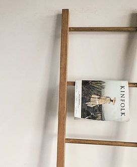 Ladder with magazine