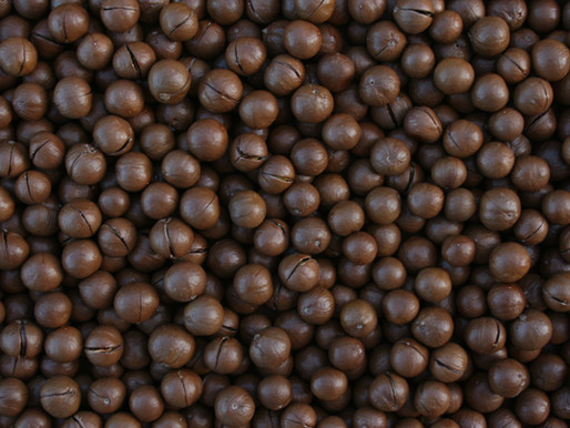 Macadamia Nut Oil-dry skin / mature skin