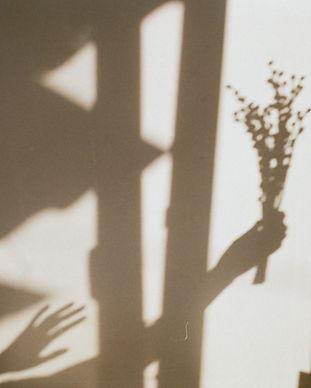 Image de Tanya Trofymchuk