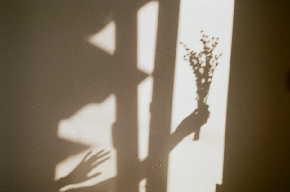 Image by Tanya Trofymchuk