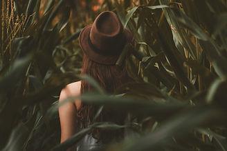 Image by Allef Vinicius