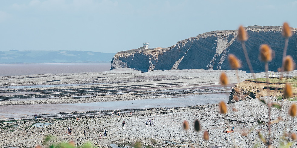 Dynamic Coast - a geological look at Watchet