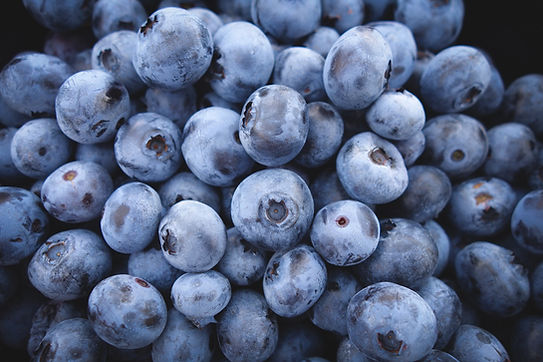 Blueberries, raw