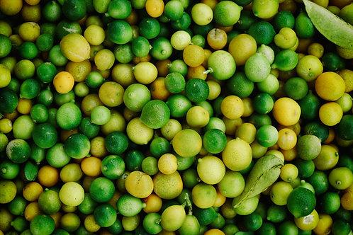 Limones Docena Franquicia