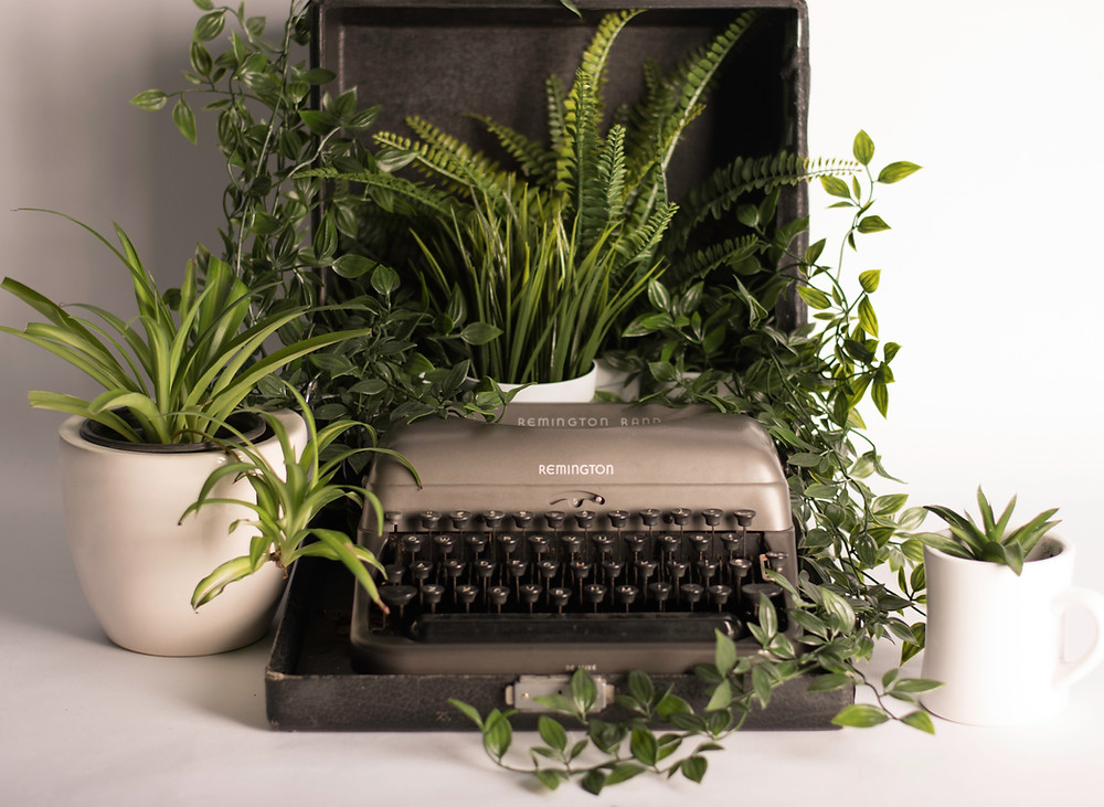 typewriter with lots of plants growing out of it