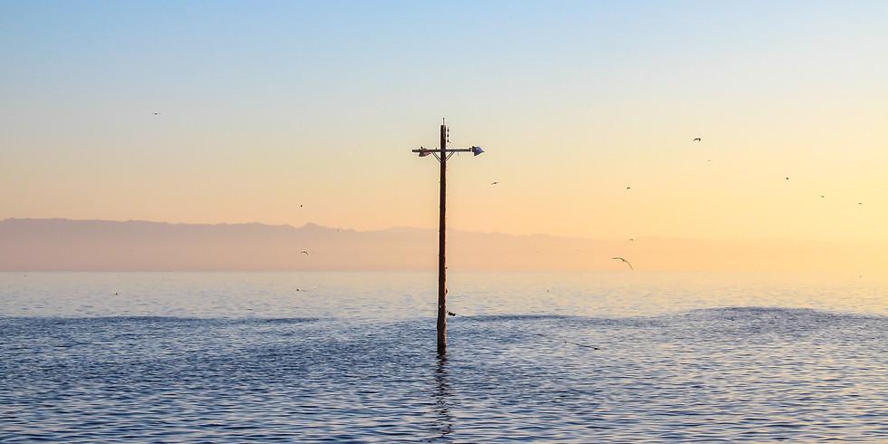 Salton Seascape Photo Tour & Art Show
