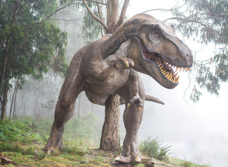 Dinosaurs are related to math!