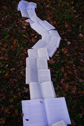 Phootgraph of a row of books open to white text covered pages and laid in a pathway across fallen leaves. Image is by Laura Kapfer via Unsplash.