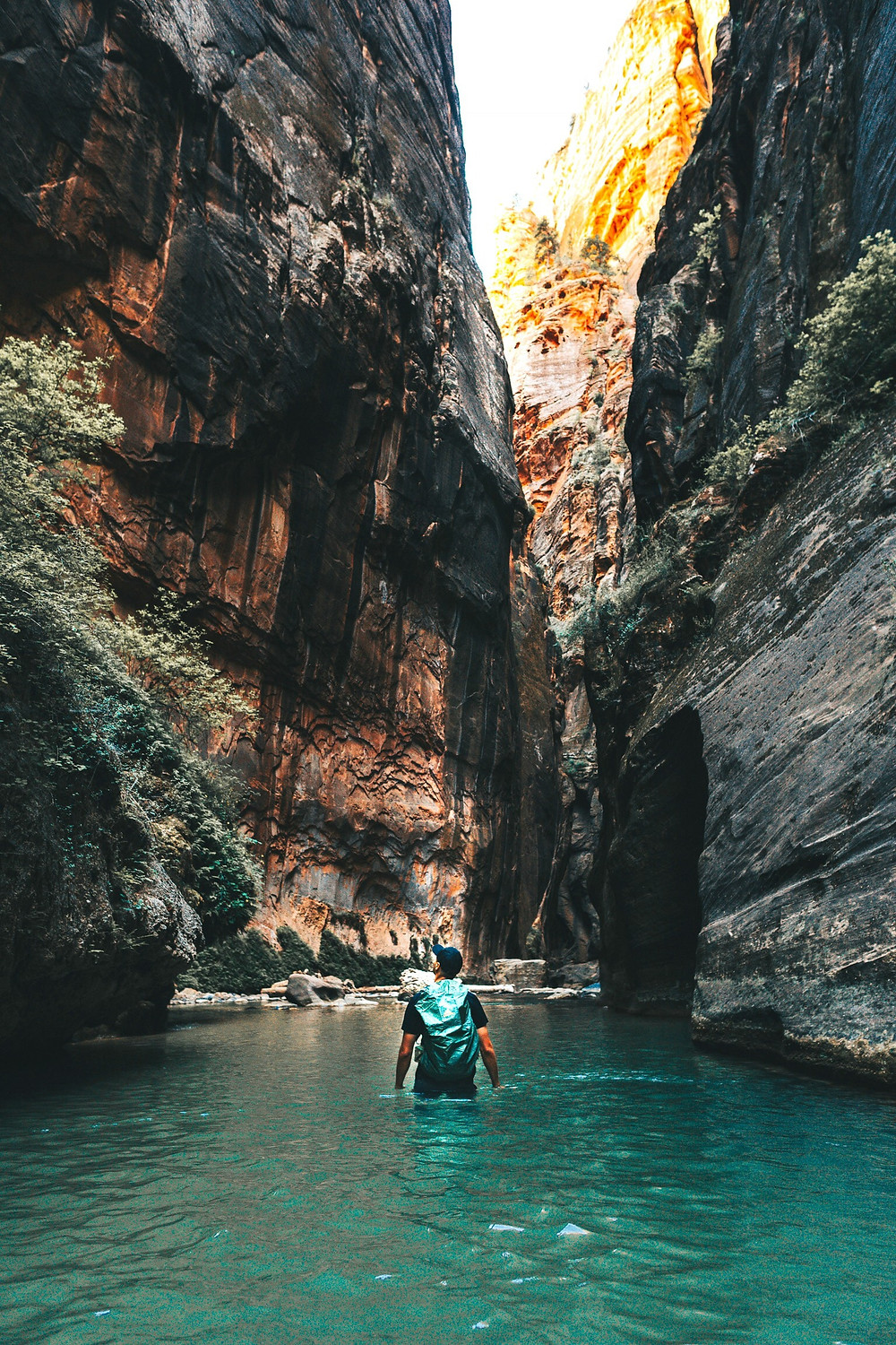 a man wading through water in Zion National Park