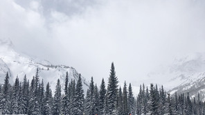 Sacopee Valley Snowdrifters SC Virtual Snow Cross Race Fundraiser