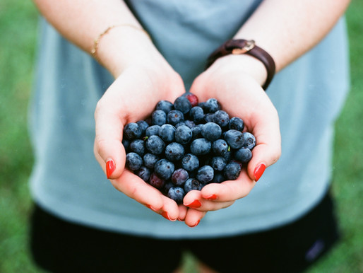 Did you know July is National Blueberry month?