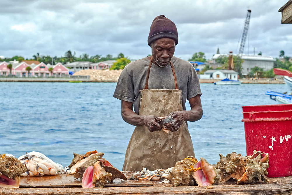 Commercial Conch Fisherman in Belize