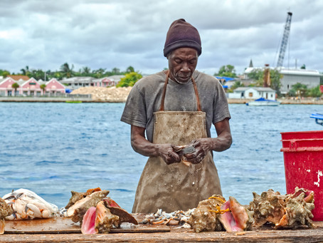 5 Fun Facts About Conch Season In Belize (April 30 - October 1, 2019)