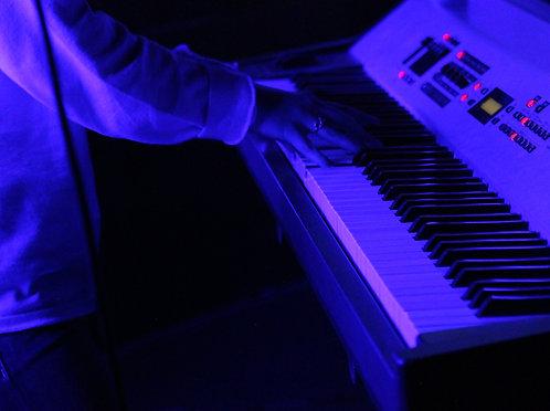 Roland Digital Stage Piano