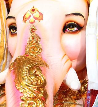 Image by Sivani Vathyam