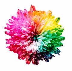 Lesson 15: Light & Colour