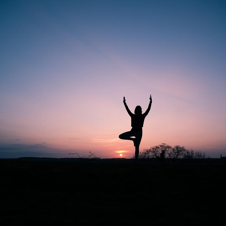 Flow Yoga 5/14