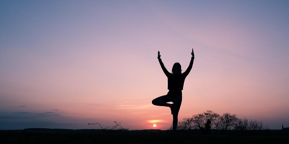Dharma II - All Levels Yoga Class