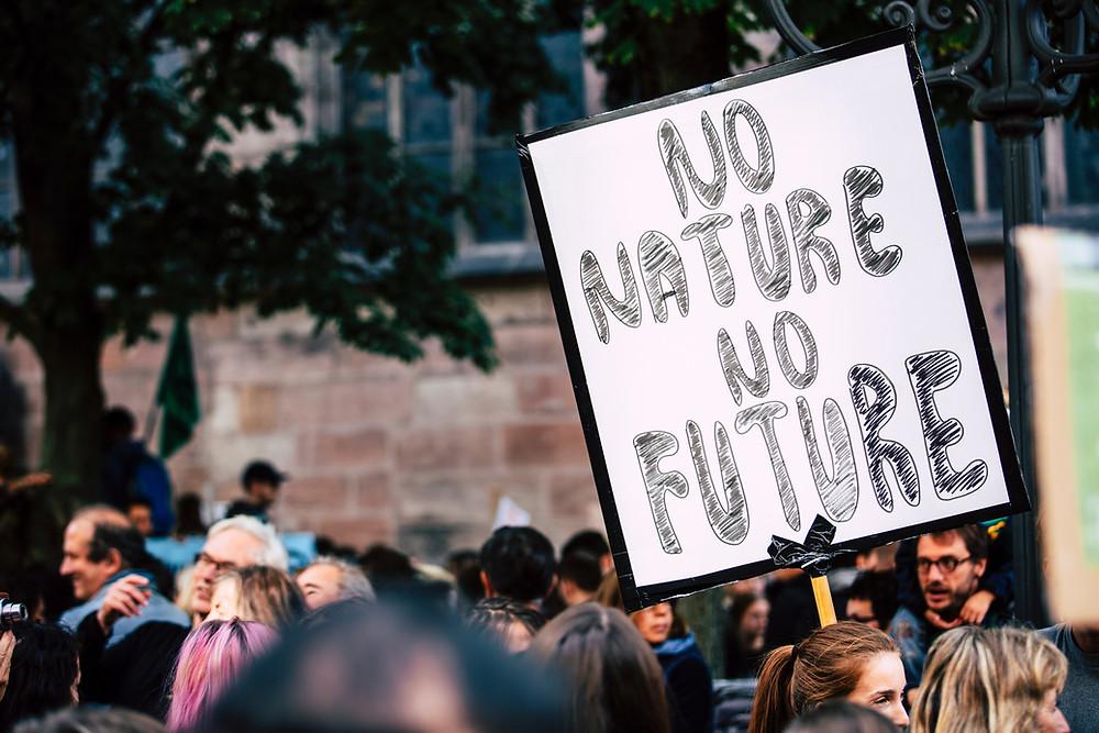 People protesting to save nature