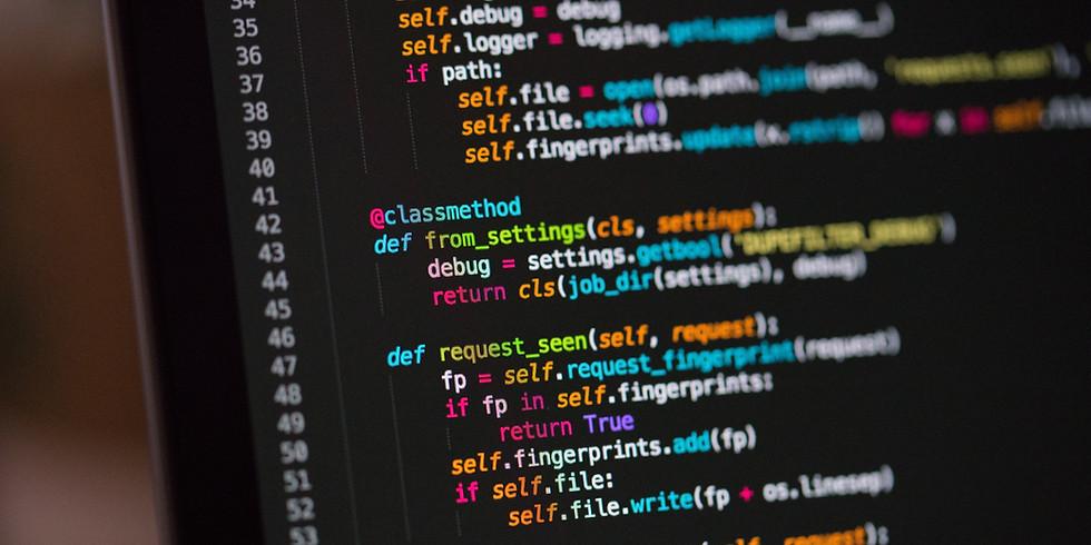 Python Fundamentals Term 2 (School Hours)