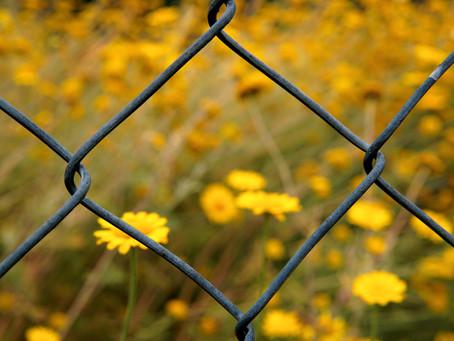 Friendly Fences: Creating Healthy Boundaries