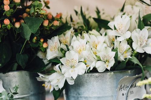 Letterbox Alstroemeria Bouquet