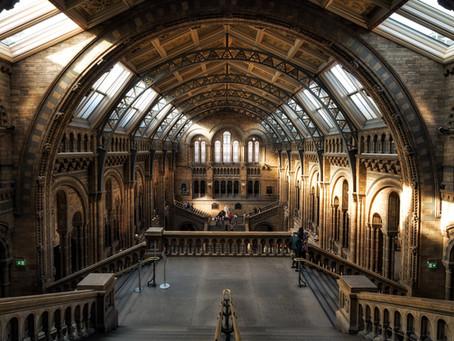 英國升學心得- UCL History | 識背書就完全冇難度?歷史系畢業之後嘅出路又係點?