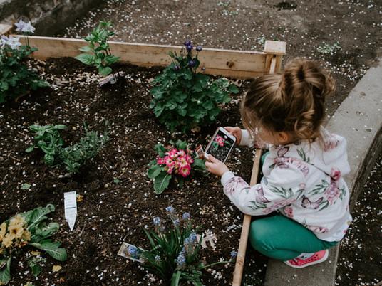 Touch of the Master Gardener