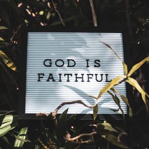PHF Week 4: Faith is Power