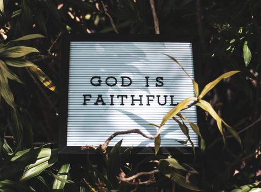 The Touch of Faith