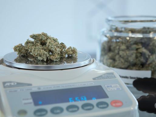 Marijuana businesses must perfect customer experience for coronavirus-spurred preorders