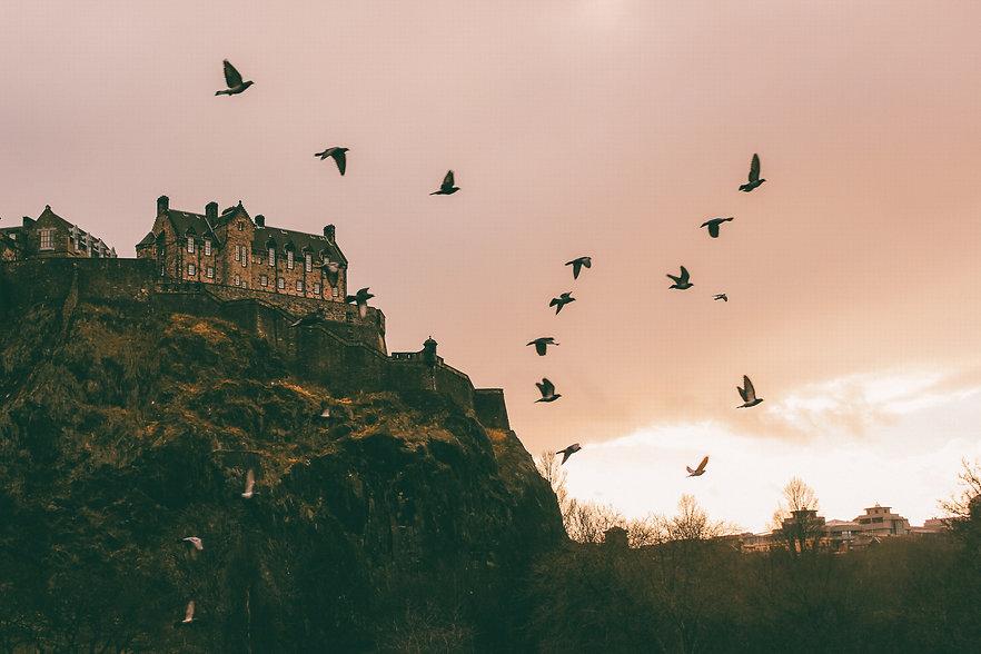 Edinburgh Castle View Birds Savora Drinks Tequila