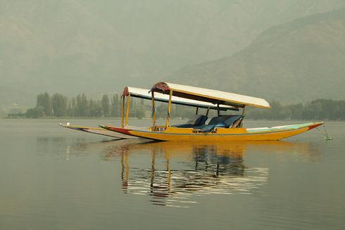 Image by Suryaansh Maithani