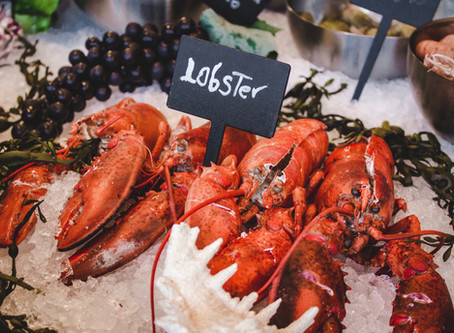 Lobster may be one of the reasons Baker endorsed Susan Collins