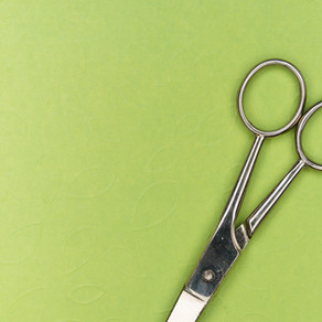 The Snip by Niamh MacPhail