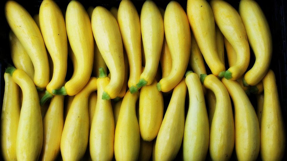 Yellow Squash