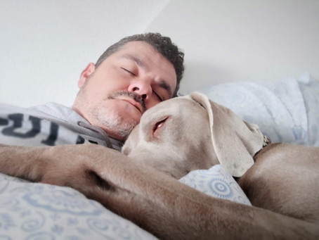 Insomnia & CBD: Restful Sleep is Possible for Your Patients