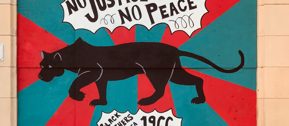 Black Lives and Black Panthers