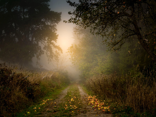 Lost Enchantment (Poem)
