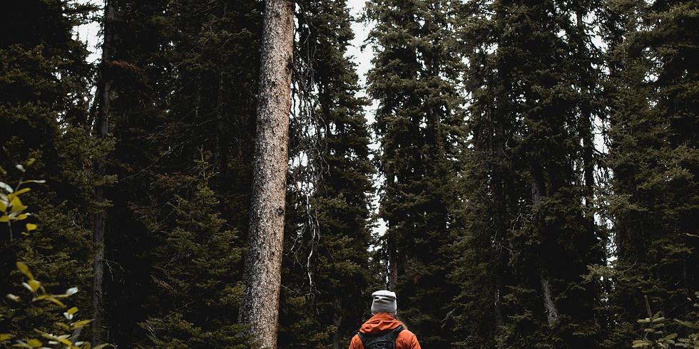 The Healthy Hiker Ladies Meetup - CREEKSIDE WEST