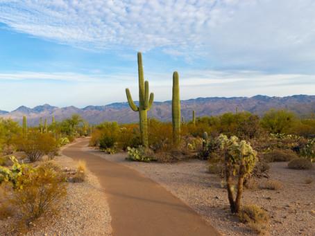 Acquiring an Arizona Apostille