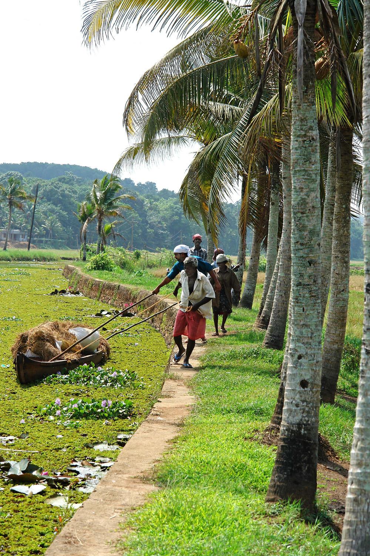 עיירה קומילי דרום הודו
