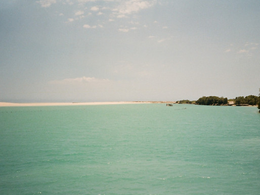 Research Undertaken on Southern Moreton Bay Island